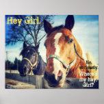 "Horse Poster: ""Hey Girl."" Poster"