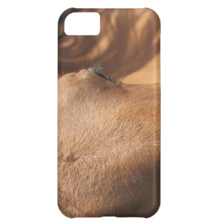 Horse Profile Cover For iPhone 5C