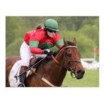 Horse Race Postcard