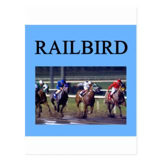 HORSE RACing railbird Postcard