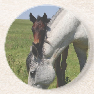 Horse Ranch Farm Destiny Nature Background Drink Coaster