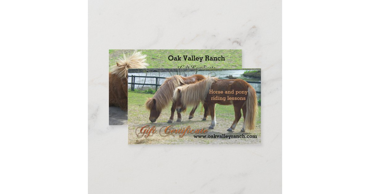 Horse riding lessons gift certificate template for Horseback riding lesson gift certificate template