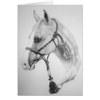 Horse, rodeo card