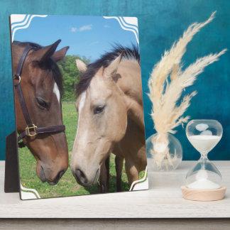 Horse Romance Plaque