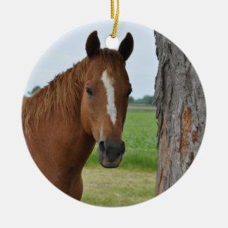Horse Round Ceramic Decoration