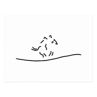 horse-run gallopp jockey postcard