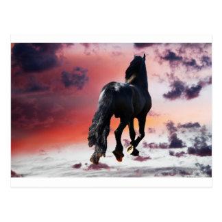 Horse running free postcard