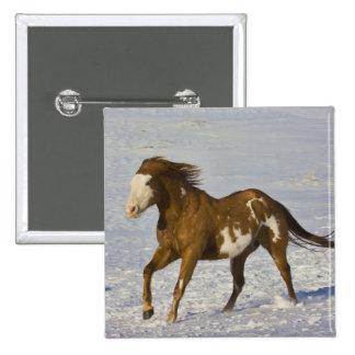 Horse Running in Snow 15 Cm Square Badge