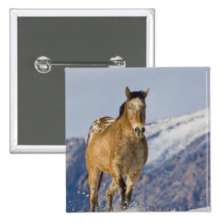 Horse Running in Snow 2 15 Cm Square Badge