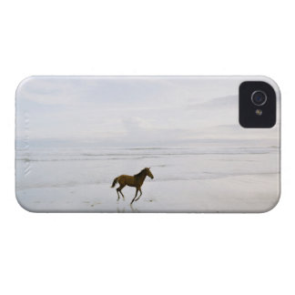 Horse running on the beach Case-Mate iPhone 4 case
