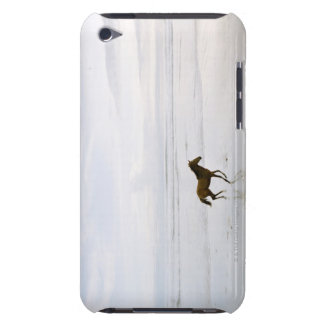 Horse running on the beach iPod touch covers