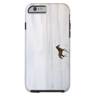 Horse running on the beach tough iPhone 6 case