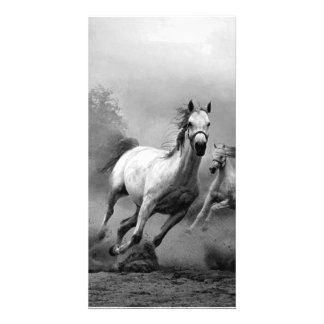 Horse Running Photo Greeting Card