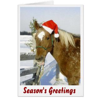Horse Season's Greetings Card