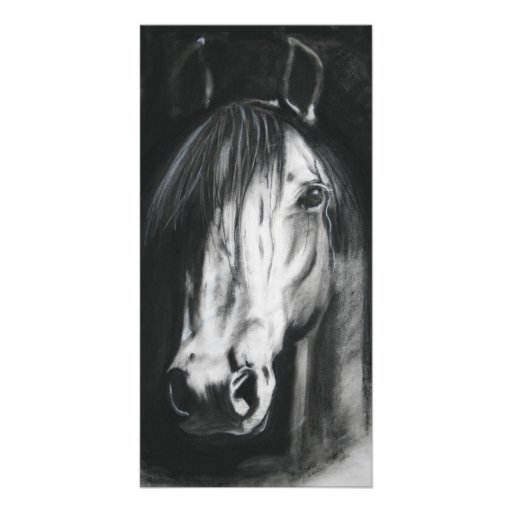 Horse sense photo card