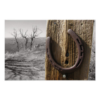 horse shoe poster