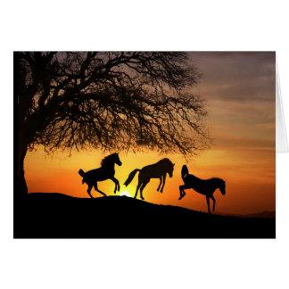 Horse Silhouette Birthday Fun Card