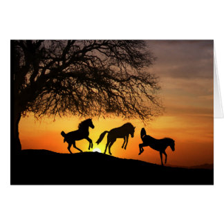 Horse Silhouette Birthday Fun Greeting Card