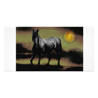 Horse silhouette by Moonlight Photo Card Template