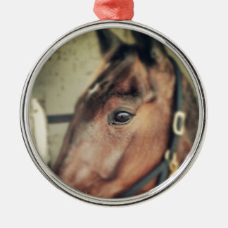 Horse Silver-Colored Round Decoration
