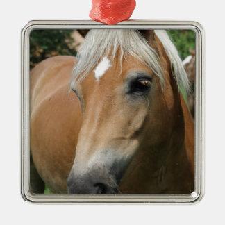 horse Silver-Colored square decoration