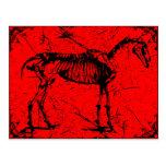 Horse skeleton red postcard