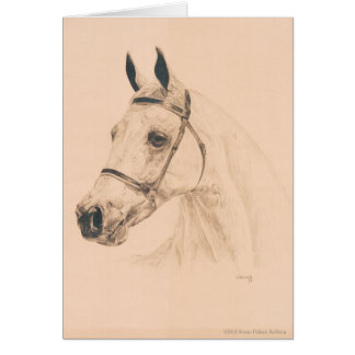 Horse sketch by Susan Pelisek Kolberg Cards