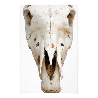 horse skull stationery