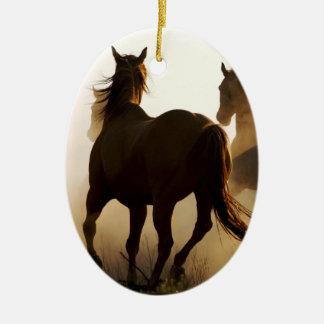 horse Special Ornaments