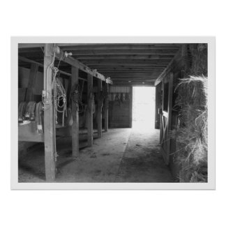 Horse Stalls in Barn, Greyscale Poster