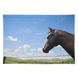 Horse standing at fence in pasture placemat