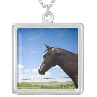 Horse standing at fence in pasture silver plated necklace
