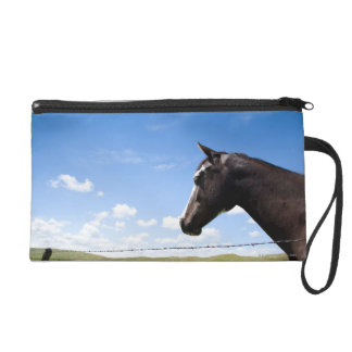 Horse standing at fence in pasture wristlet