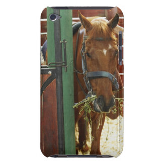 Horse standing in a stable barely there iPod case