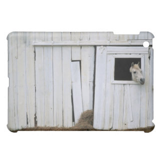 Horse Sticking Head out Barn Window iPad Mini Cover