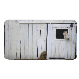 Horse Sticking Head out Barn Window iPod Touch Covers