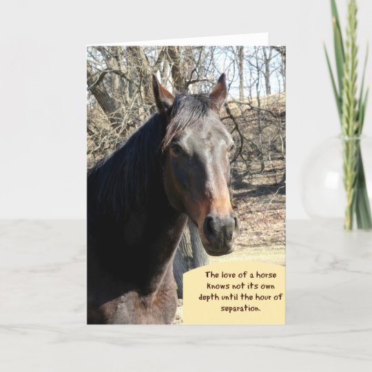 Horse Sympathy Card With Quote Zazzlecouk