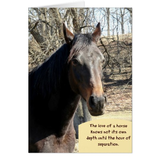 Horse Sympathy Card with Quote