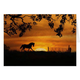 Horse Sympathy Loving Memories Card