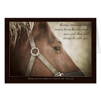 Horse Sympathy With Nice Words Greeting Card