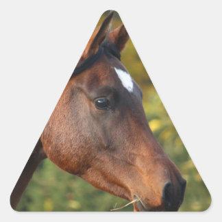 Horse Triangle Sticker
