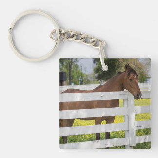 Horse Waiting by the Fence Key Ring