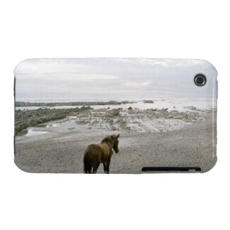 Horse walking on the beach iPhone 3 cover