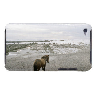 Horse walking on the beach iPod Case-Mate case
