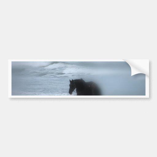 Horse walking the beach Newport Rhode Island Bumper Stickers