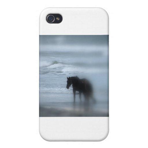 Horse walking the beach Newport Rhode Island iPhone 4/4S Cases