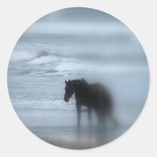 Horse walking the beach Newport Rhode Island Round Sticker