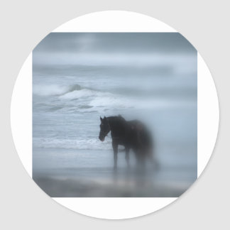 Horse walking the beach Newport Rhode Island Stickers