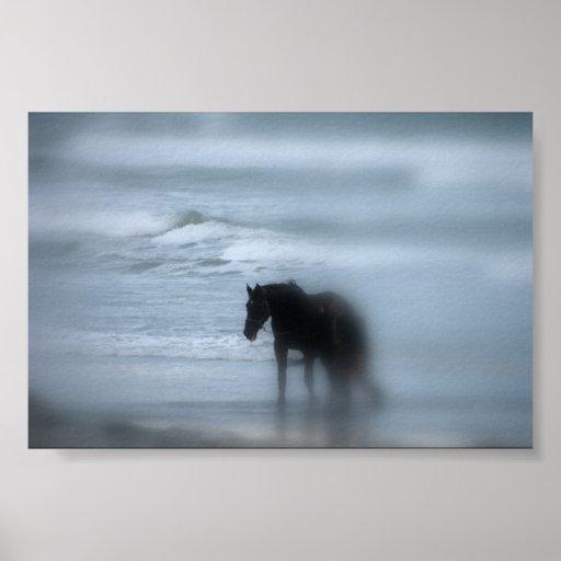 Horse walking the beach Newport RI Poster