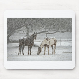horse winter snow farm ranch animals snowy frozen mouse pad